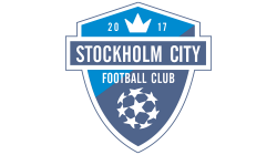Stockholm City FC 2. Serie: 2019 P10 8
